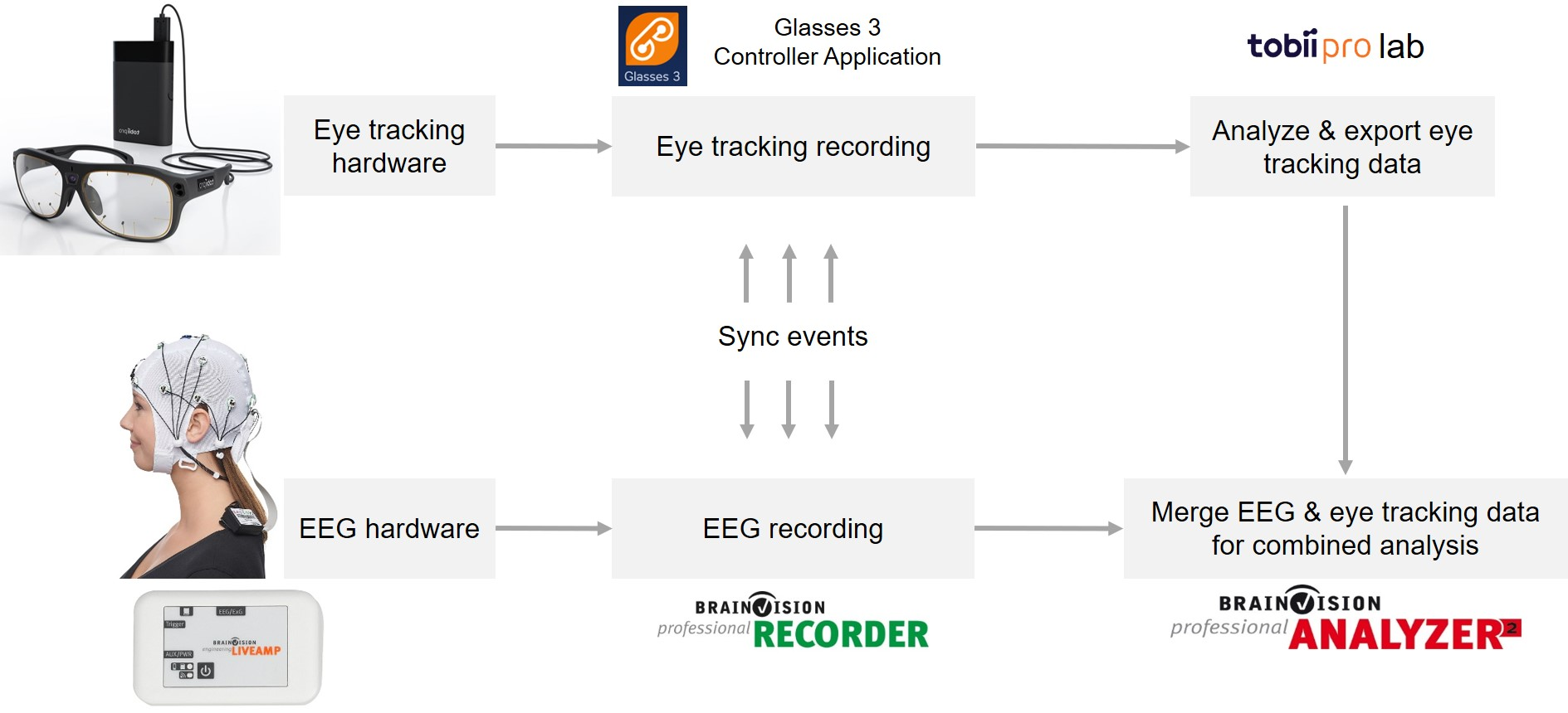 Fig. 2. Mobile EEG and wearable eye tracking application workflow. The diagram shows each step and material involved in the workflow from the start (i.e., EEG and eye tracking data recording) up to the end (i.e., offline merging of EEG and eye tracking data and subsequent combined analyses).