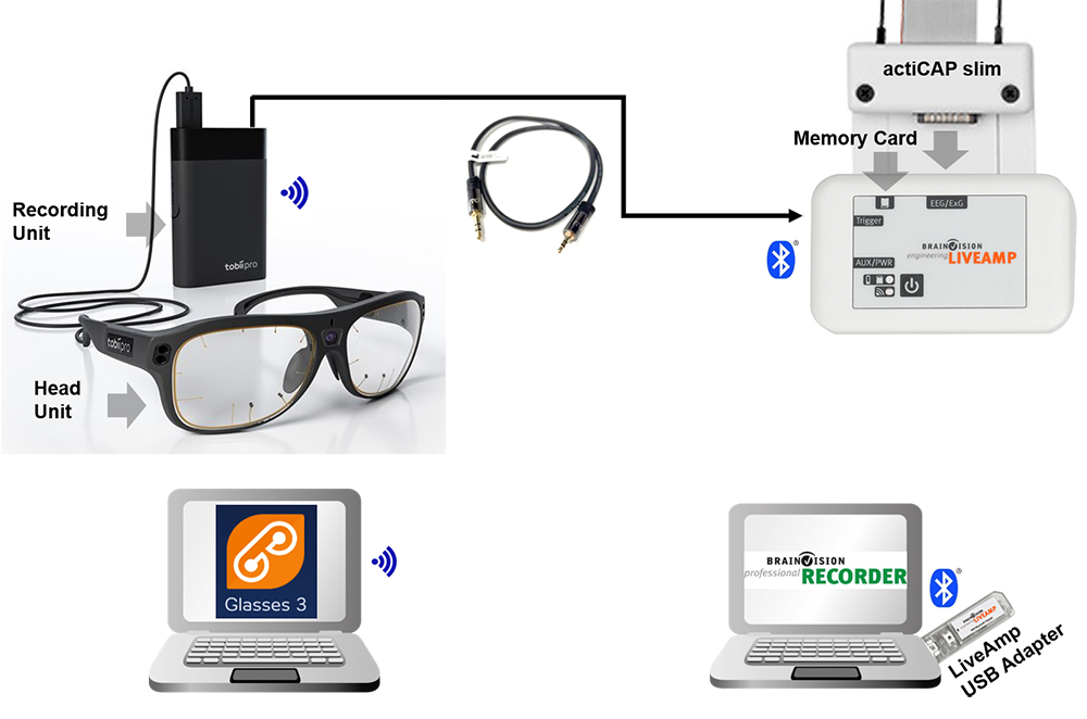 Mobile EEG & eye tracking Fig. 4. Mobile EEG and wearable eye tracking application setup. The Glasses 3 Head Unit (i.e., the glasses) is connected to the Recording Unit and communicates wirelessly to the computer running the Glasses 3 controller application. The actiCAP slim electrodes are connected to the LiveAmp amplifier, which transmits data via Bluetooth® to the computer running BrainVision Recorder whilst saving them also locally on the memory card. A 3.5 mm jack to 2.5 mm jack cable connects the Sync Port of the Glasses 3 Recording Unit to the 1-bit trigger input port of the LiveAmp, ensuring synchronization between the two data streams.