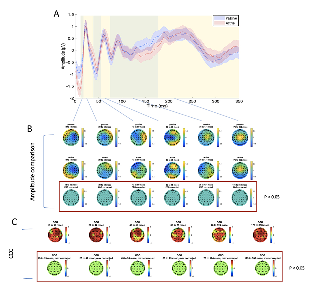 Figure 4: differences and similarities between PE and AE sessions in the mPFC ISICA condition. Panel A: TEP averaged in the four electrodes surrounding the stimulation site (FZ, AF2, AFZ, AF4), for passive (blue line) and active (red line) electrodes. Shaded areas indicate the standard error of the mean; green and yellow panels refer the time windows of interest which were used for amplitude comparison and CCC. Panel B: amplitude comparison between signals obtained with PE (upper row) and AE (middle row). No statistically significant differences were found (lower row). Panel C: CCC analysis (raw CCC values are illustrated in the upper row, while statistically corrected are visualized in the lower row). Only one electrode showed significantly lower CCC than expected.