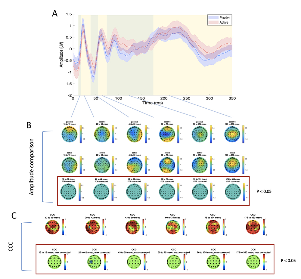 Figure 5: differences and similarities between PE and AE sessions in the mPFC SSICA condition. Panel A: TEP averaged in the four electrodes surrounding the stimulation site (FZ, AF2, AFZ, AF4), for passive (blue line) and active (red line) electrodes. Shaded areas indicate the standard error of the mean; green and yellow panels refer the time windows of interest which were used for amplitude comparison and CCC. Panel B: amplitude comparison between signals obtained with PE (upper row) and AE (middle row). No statistically significant differences were found (lower row). Panel C: CCC analysis (raw CCC values are illustrated in the upper row, while statistically corrected are visualized in the lower row). Only one electrode showed significantly lower CCC than expected.